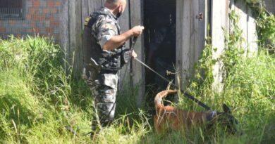 Rápida ação da polícia prende criminosos e evita execuções no Litoral
