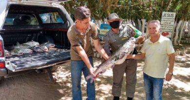 PATRAM apreende peixes da espécie Bagre em Tramandaí
