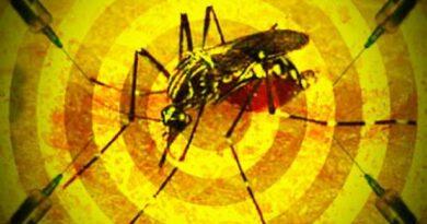 Nova preocupação: Saúde intensifica vacinação contra a febre amarela em 11 municípios do Litoral